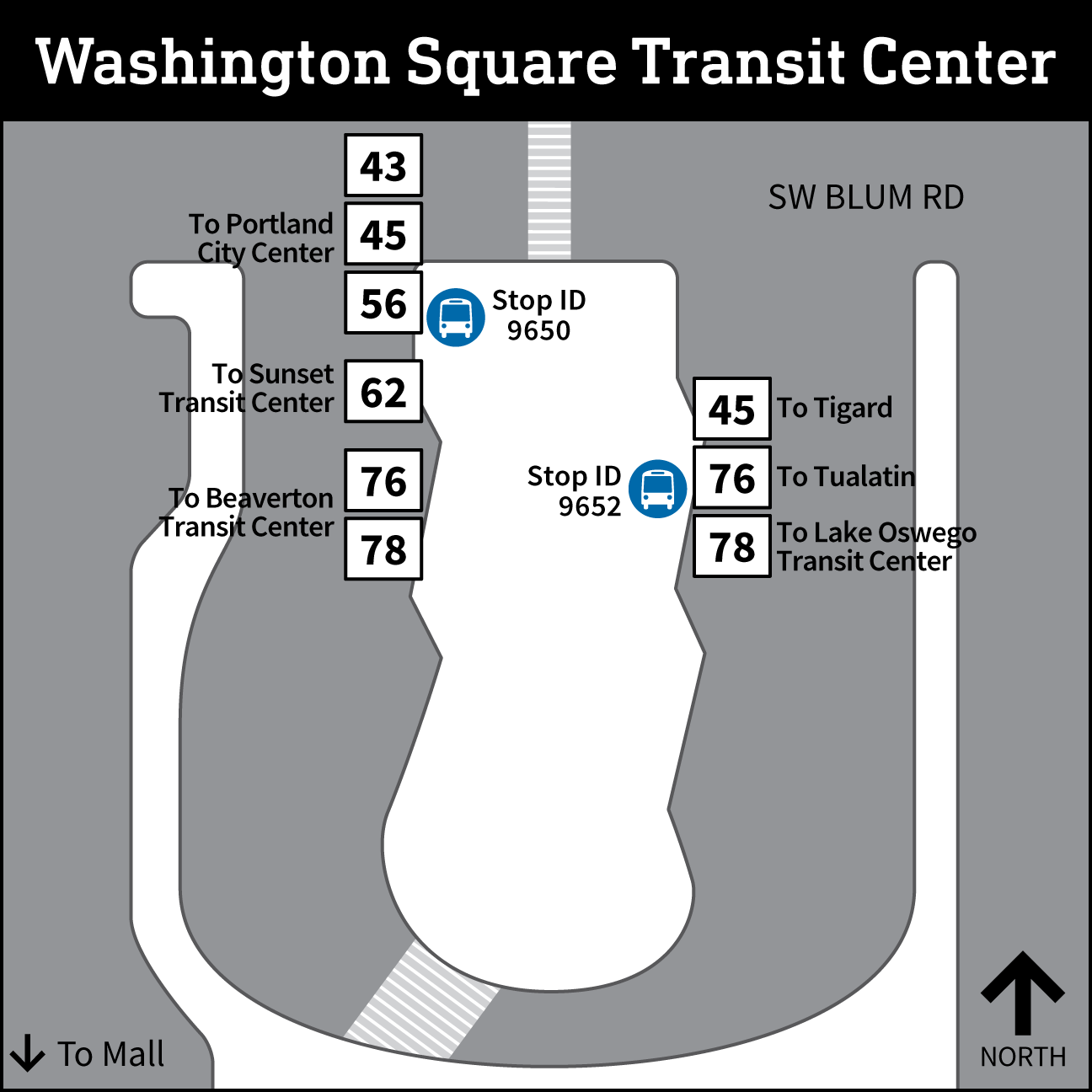 Washington Square Transit Center